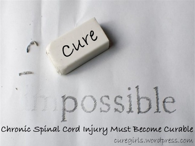 Cure for SCI Must Become Possible